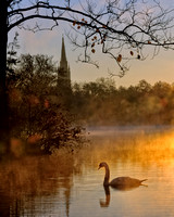 Basilica and Swan in Mist at Sunrise