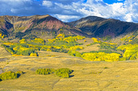 Fall Foliage (Gothic Rd, Crested Butte, CO)